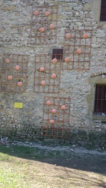170219 -Ce n'est pas un mur d'escalade